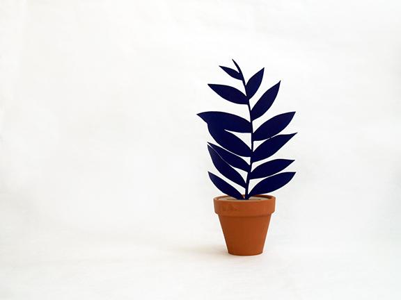 planta de madera