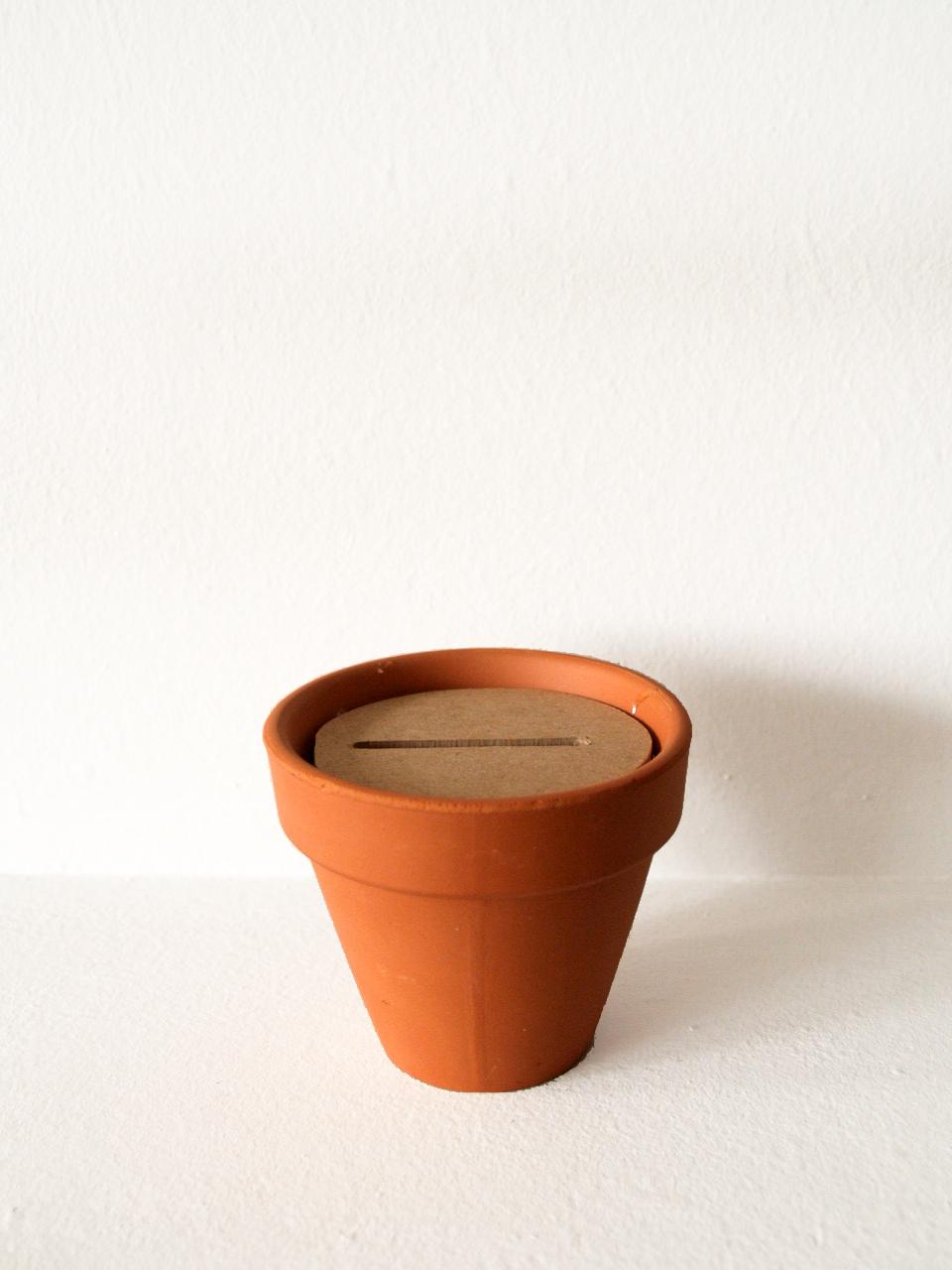 planta de madera_maceta