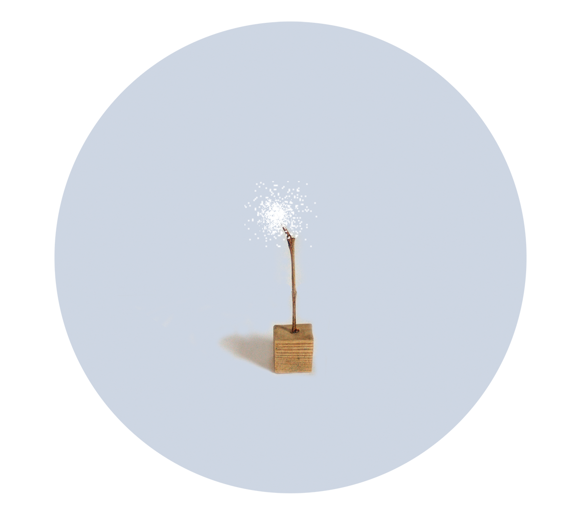 ilustracion-madera